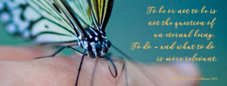 quote_butterfly_tobeortodo_perhonen_friend_srs