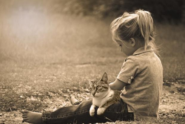 childcat-489685-thepixelman-pixabay-srs