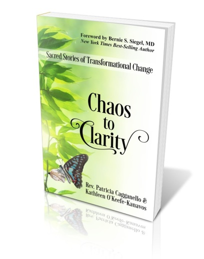 Chaos to Clarity 3D Cover