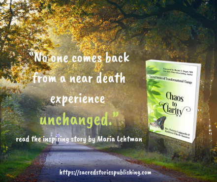 chaos to clarity promo image and quote maria lehtman